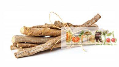 lemnul dulce