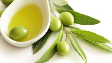 Uleiul demăsline uleiul de masline ulei de masilne doftoria