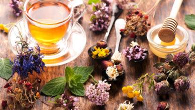 Ceaiul de plante versus consumul de ierburi doftoria