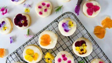 Flori de primăvară care se pot mânca doftoria