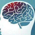 7 alimente pentru memorie și sănătatea creierului