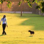 5 beneficii ale unei plimbări de 30 de minute zilnic