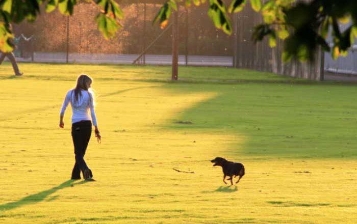 beneficiile unei plimbări doftoria