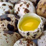 Ouăle de prepeliță: 7 beneficii pentru sănătate