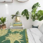10 plante de dormitor pentru a vă ajuta să dormiți mai bine