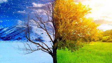 sfaturi pentru tranziția de la iarnă la primăvară doftoria