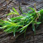 Tarhon: un ingredient formidabil pentru sănătate