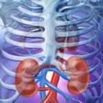 6 simptome care arputea anunța o afecțiune la rinichi