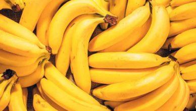 banana doftoria