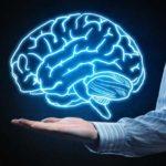 Creierul: ce ne afectează creierul și cu ce alimente îl protejăm