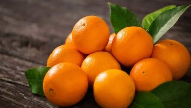 portocala doftoria