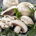 Ciuperci champignon: proprietăţi şi rețete