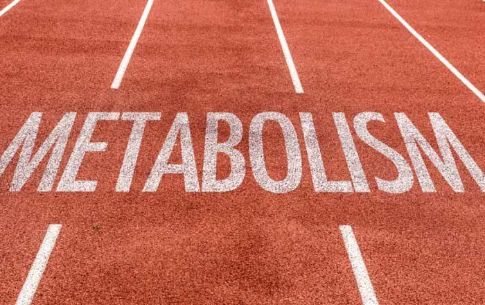 Metode simple pentru accelerarea metabolismului