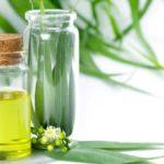 Ulei de eucalipt: proprietăți şi tratamente