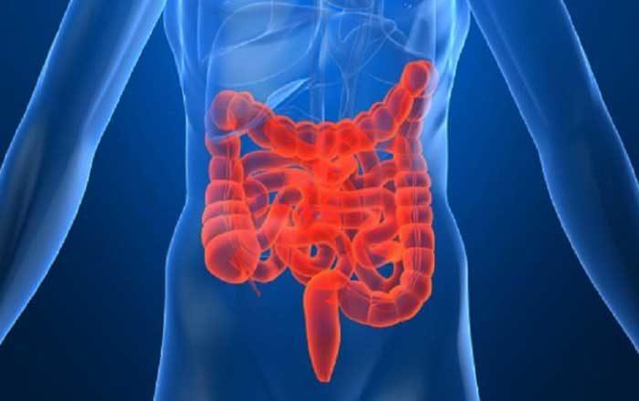 colon iritabil