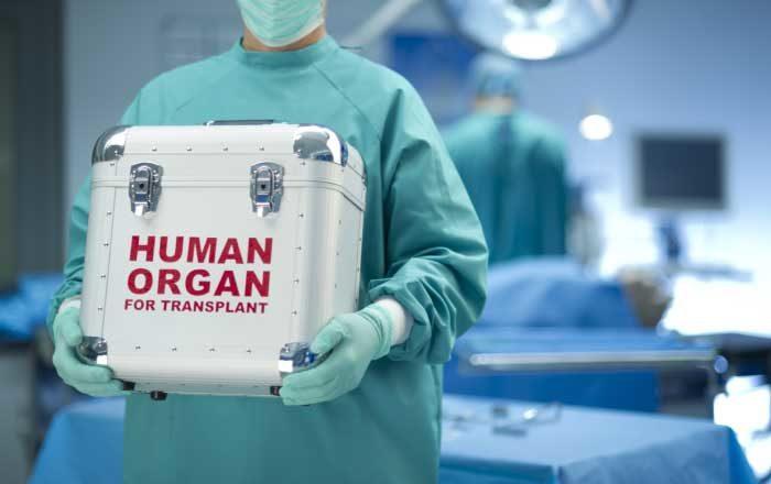 donarea de organe donator organe