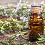 Tratamente naturiste cu rozmarin (nevralgii, contuzii, memorie, oase, dureri articulare, astenie etc.)