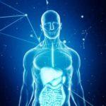 Metale grele în corp: care sunt simptomeleintoxicării cu metale grele