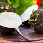 Ridiche neagră: tratamente naturiste cu ridiche neagră