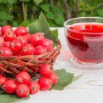 Tratamente cu păducel (infuzie, tinctură, decoct, sirop)