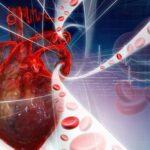 Boli cardiovasculare: cele mai frecvente boli cardiovasculare