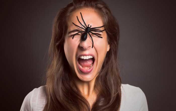 arahnofobie simptome cauze tratament ce este arahnofobia