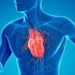 Cardiomiopatia: simptome, cauze și tratament în boala mușchiului inimii