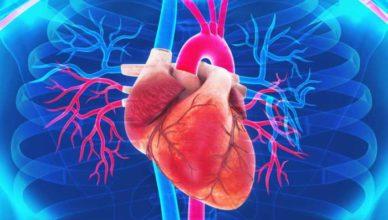 miocardita simptome tratament dieta miocardite