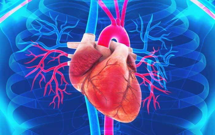 dureri articulare cu miocardită