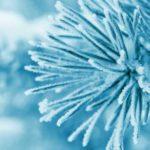 Cum ne afectează frigul