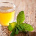 Ceai de salvie: beneficii, tipuri şi contraindicații