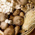 Tratamente cu ciuperci: beneficii și contraindicații