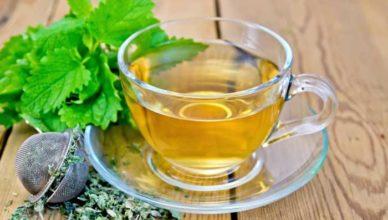 Ceai de roiniță