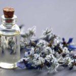 Ulei de limba mielului (Ulei de Borago): beneficii, proprietăți, utilizări