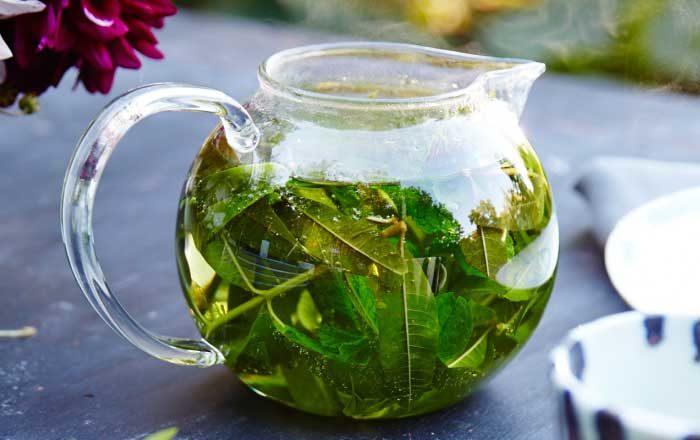 Ceaiuri pentru splină