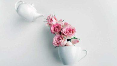 ceaiuri pentru colesterol