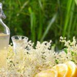 Socata: beneficii, remedii și contraindicaţii