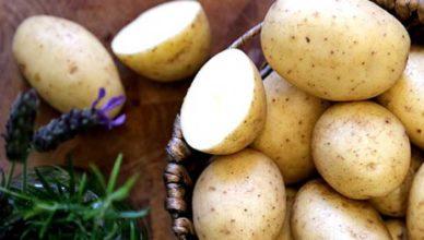 Ce tratăm cu cartofi