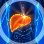 Simptomele excesului de grăsime în ficat