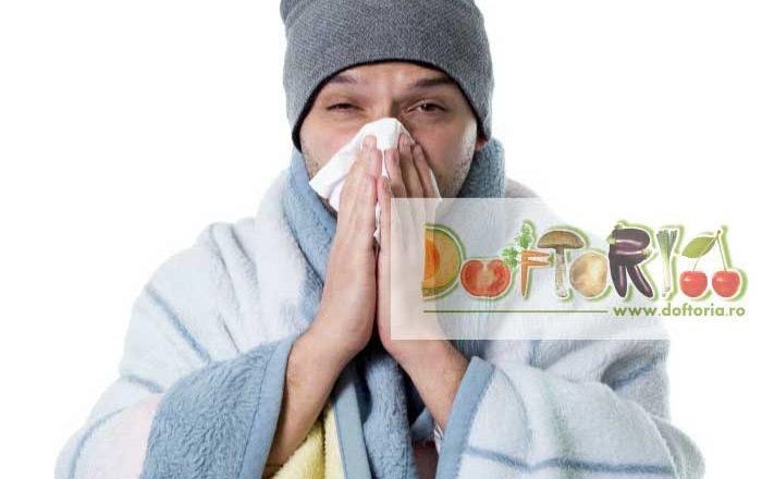 gripa doftoria
