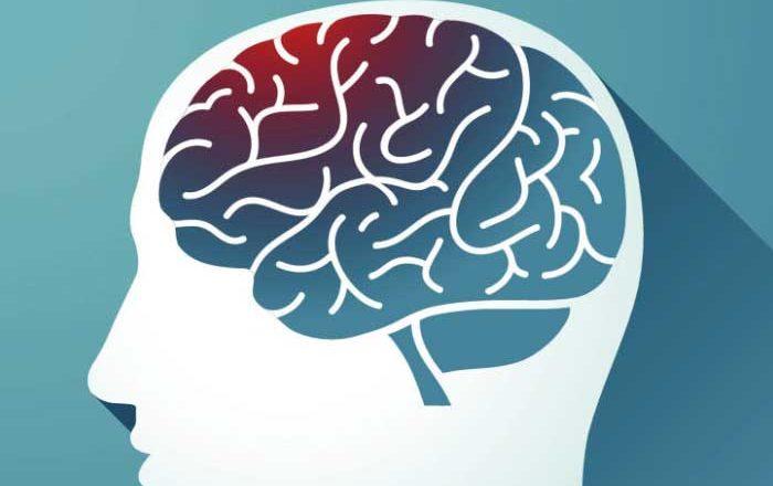Succesul pierderii în greutate legat de regiunile cerebrale de autocontrol