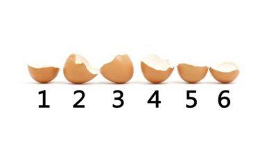 coji de ouă