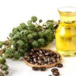 Ulei de ricin: 10 întrebuințări și tratamente naturiste