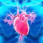 Boala coronariană: simptome, cauze și tratament