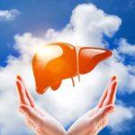 Regenerarea ficatului: remedii naturale pentru ficat