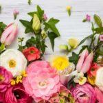 Astenia de primăvară: simptome și remedii naturale