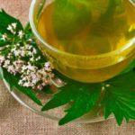 Ceai de valeriană: beneficii și contraindicații