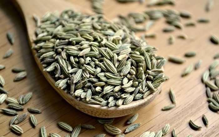 semințe de fenicul