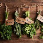 Digestive naturale: plante pentru a uşura digestia