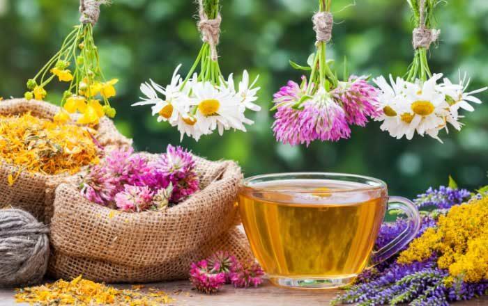 Ceai de rostopască